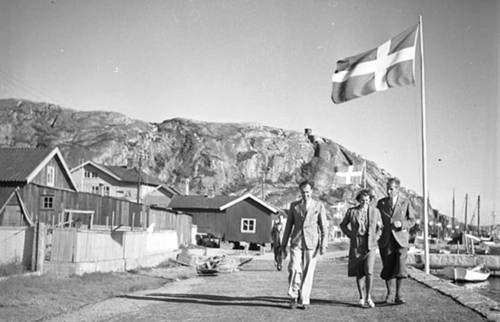 Om Sveriges historia