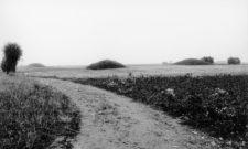 Gravhögar från bronsåldern på Steglarps gravfält