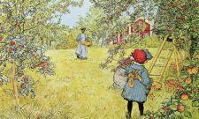 Äppelskörd av Carl Larsson